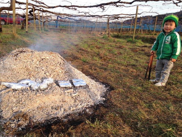 焼き芋 葡萄農家の特権