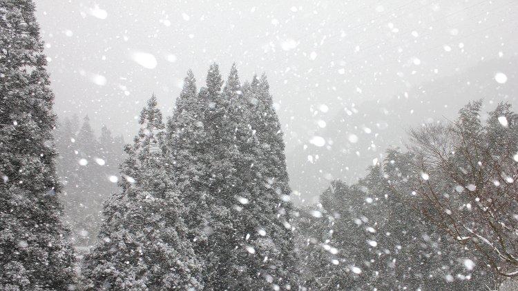 大寒波 うきは 吹雪